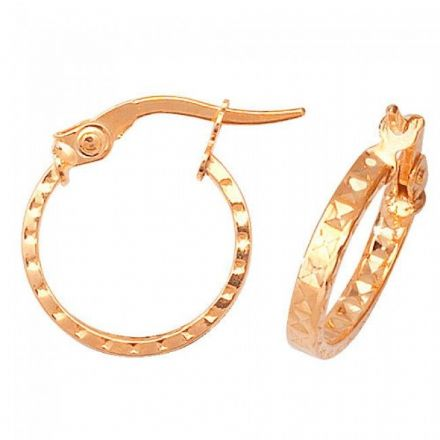 Just Gold Earrings -9Ct Dia Cut Earrings, ER651